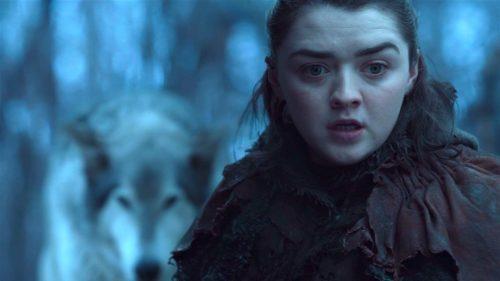 Nymeria and Arya in GOT 7x02- Stormborn