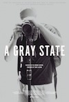 Best Films of 2017: A Gray State