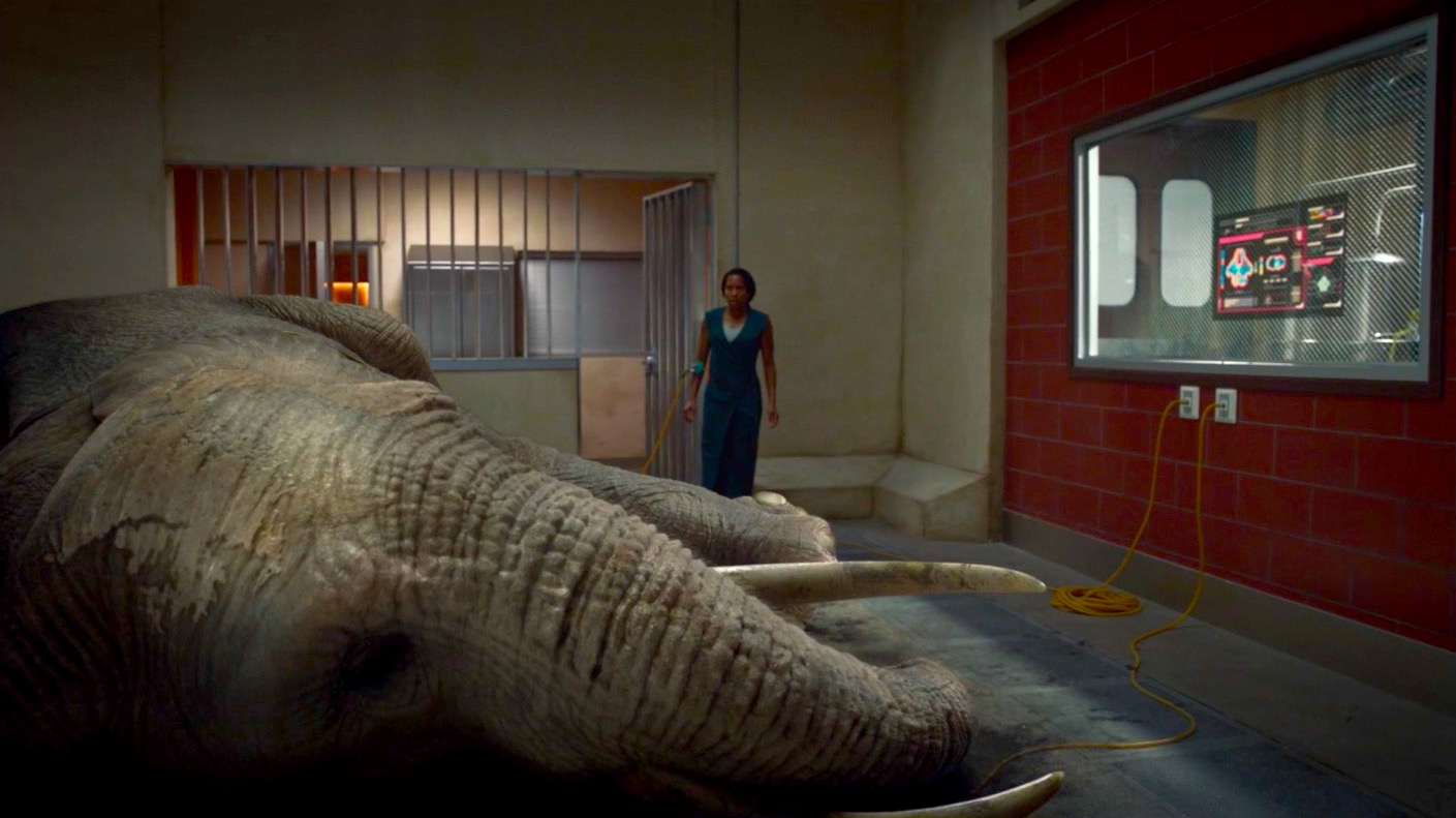 Regina King and The Elephant in the Room in WATCHMEN 1x07